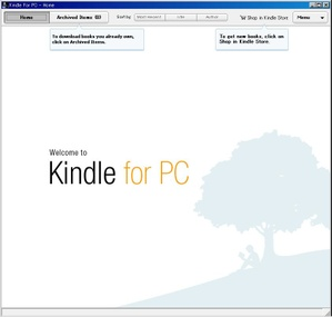 Kindlepcwindow2